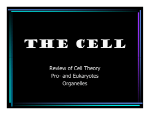 The Cell - Shelly's Science Spot