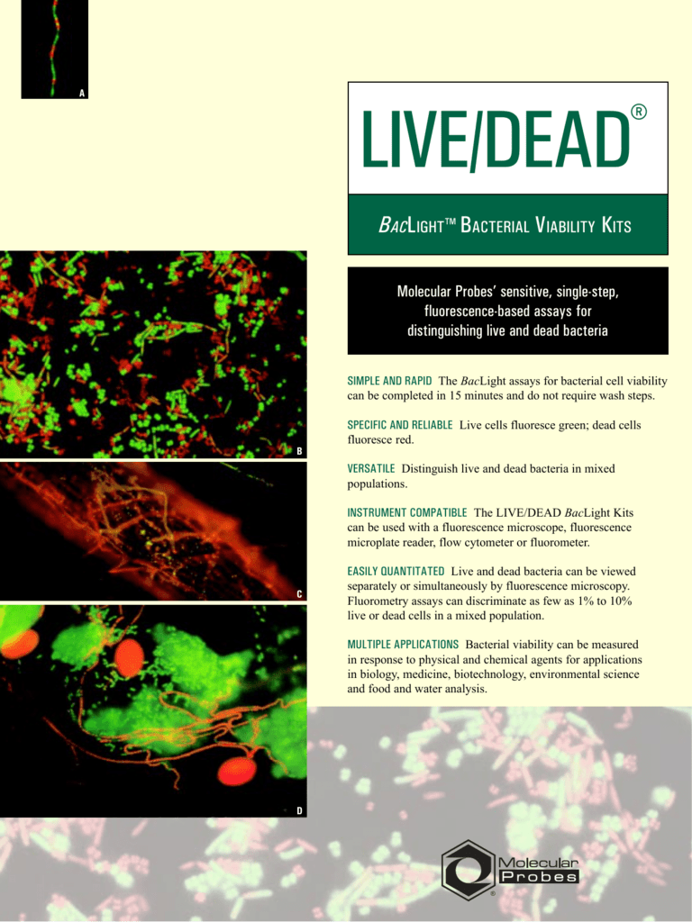 LIVE/DEAD BacLight Bacterial Viability Kits
