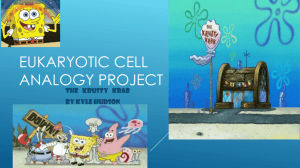 Eukaryotic Cell Analogy Project