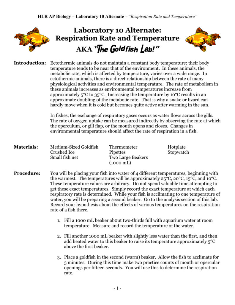 report goldfish respiration lab Transcript of cellular respiration lab report background • cellular respiration is process in which organisms break down sugars for energy cellular respiration lab.