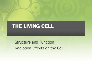 the living cell