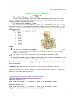 respiratory system study notes pdf
