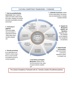 CULTURAL COMPETENCY FRAMEWORK—7 DOMAINS The
