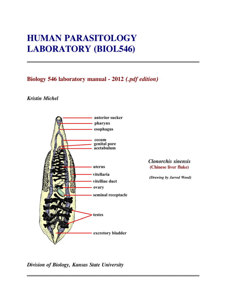 HUMAN PARASITOLOGY LABORATORY (BIOL546)
