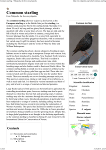 Common starling - Wikipedia, the free encyclopedia