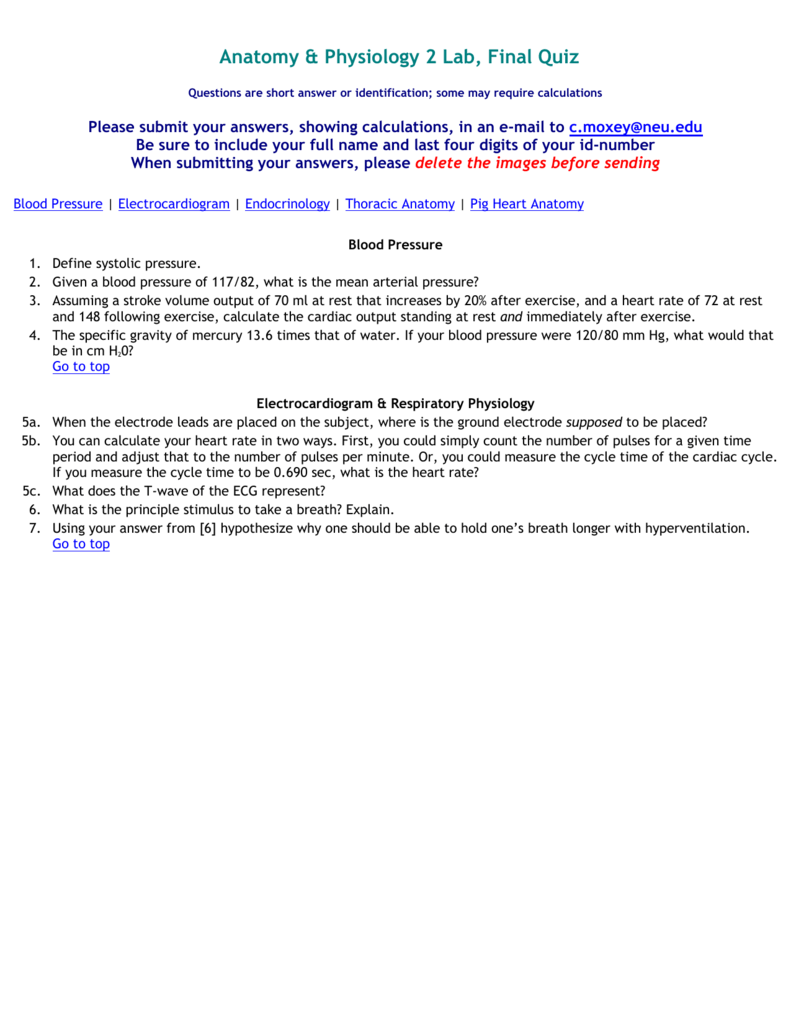 Anatomy & Physiology 2 Lab, Final Quiz Questions