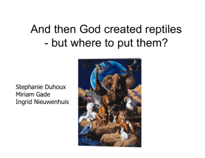 And then God created reptiles