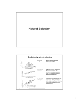 How Does Environment Affect Natural Selection