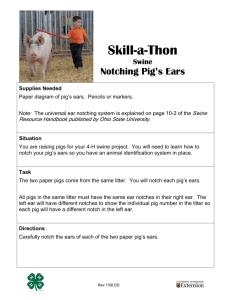File - Swine Industry