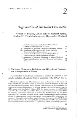 Organization of Nucleolar Chromatin