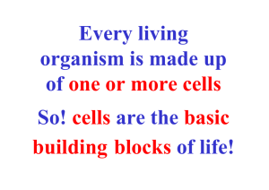 Every living organism is made up of one or more cells