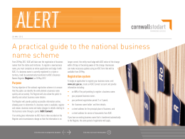 A practical guide to the national business name
