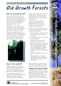 Old growth forests - natural resource management information note