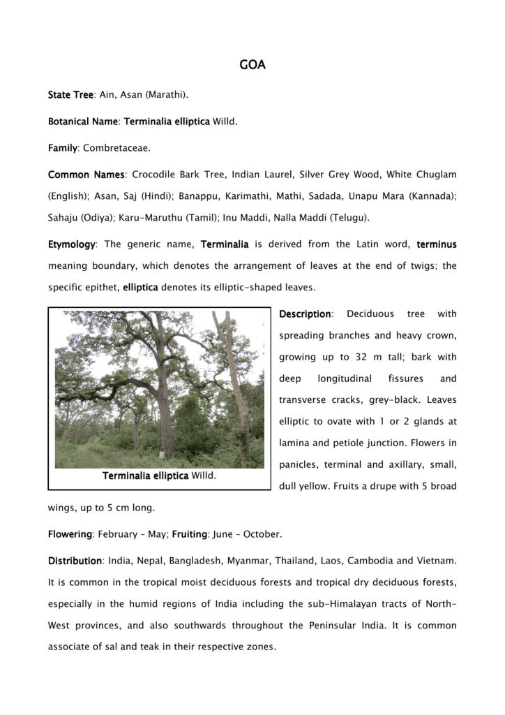 Goa State Tree Final