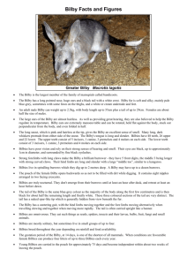 Bilby Fact Sheet