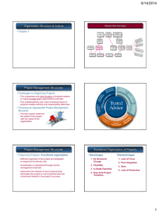 Organization Structure & Culture Project Management Structures