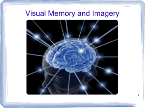Visual Memory and Imagery