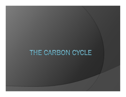 The Carbon Cycle powerpoint