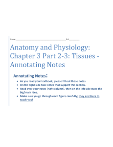 Annotating Notes - Anatomy and Physiology