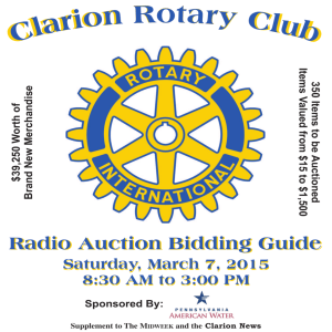 rotary auction bidding guide