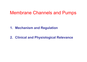 Membrane Channels and Pumps