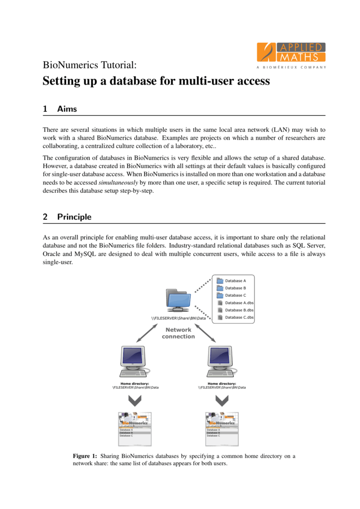 Setting up a database for multi-user access