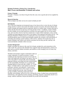 Wetlands and carbon - Waquoit Bay National Estuarine Research