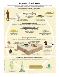 Aquatic Food Web - Michigan Sea Grant
