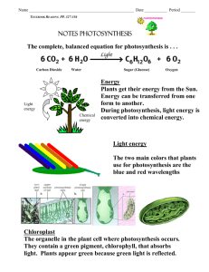 8.2 Photosynthesis: An Overview (230