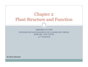 Chapter 2 Plant Structure and Function