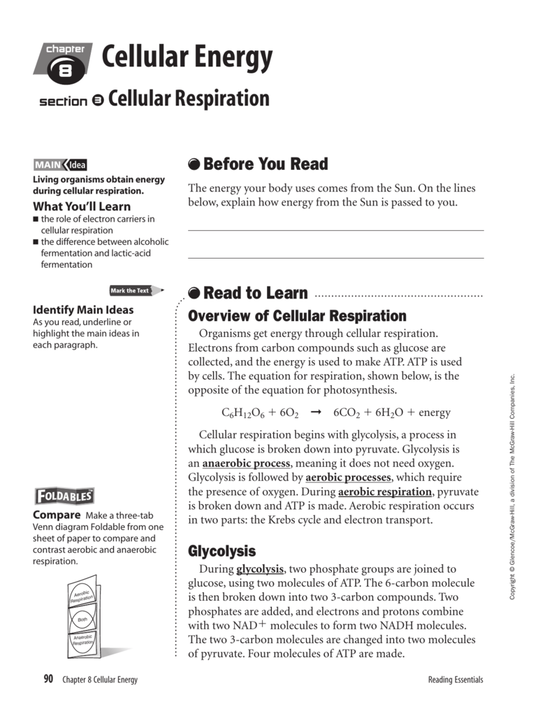 Reading Essentials Cellular Respiration