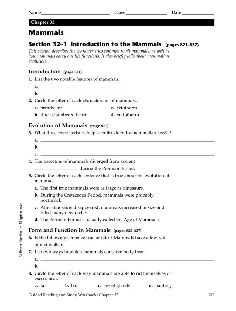 chapter 32 mammals se rh studylib net Eset 32 Keys Eset 32 Keys