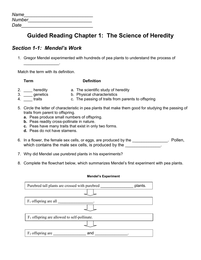 Guided Reading Chapter 1 The Science Of Heredity