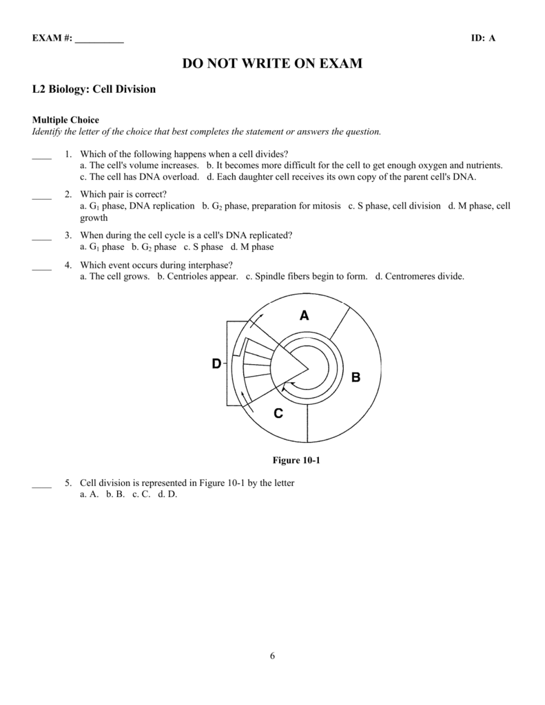 ExamView Pro   l2   Cell Division Exam.tst
