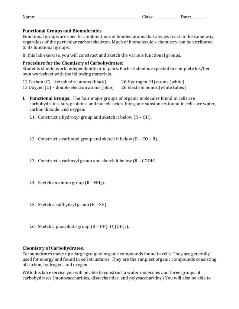 worksheet Functional Groups Worksheet Answers functional groups and biomolecules