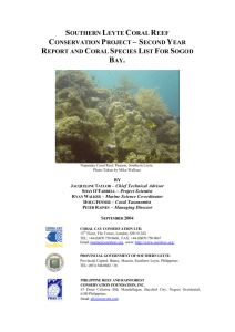 southern leyte coral reef conservation project