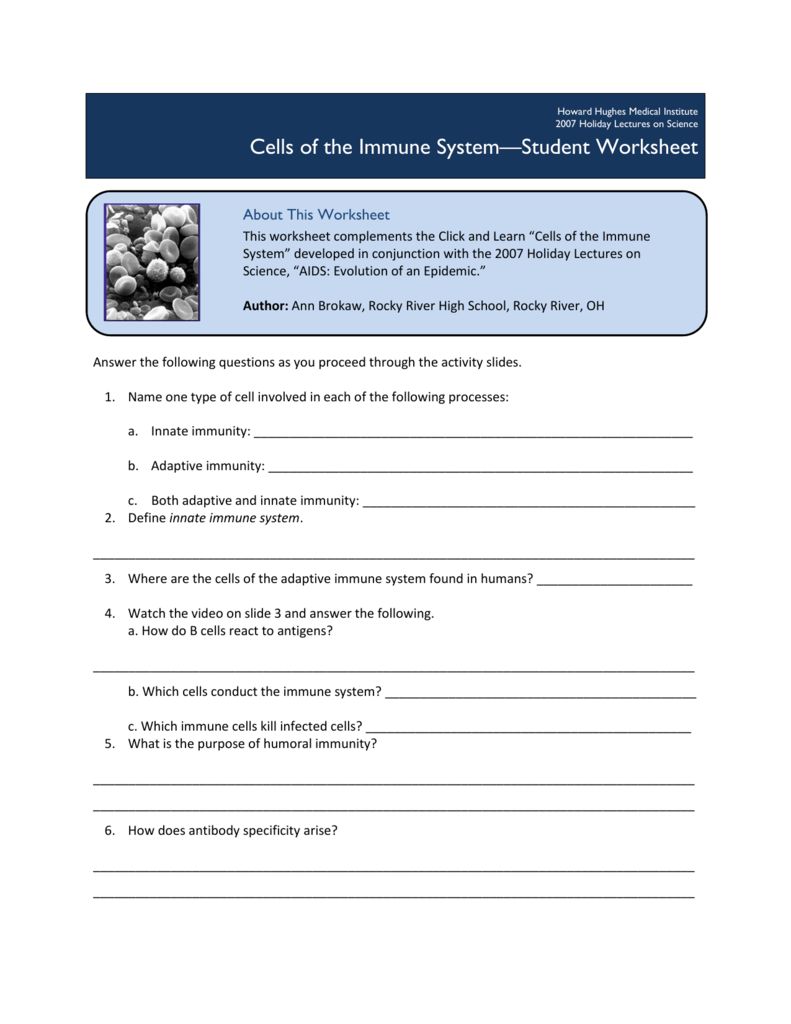 Cells Of The Immune System Student Worksheet