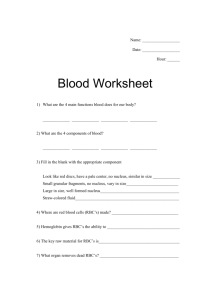 Blood Worksheet