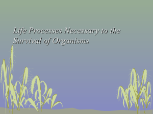 Life Processes Necessary to the Survival of Organisms
