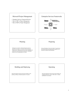 Microsoft Project Management Enterprise Services Frameworks