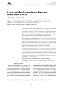 A study of the discomalleolar ligament in the adult human
