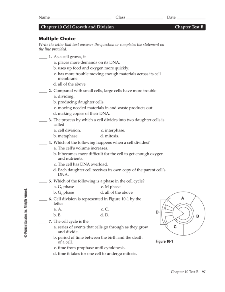 worksheet Division Test unit iv test practice questions chapter 10 b