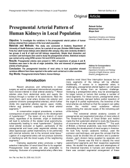 Presegmental Arterial Pattern of Human Kidneys in Local Population