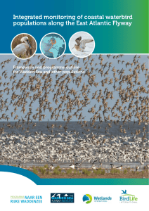 Integrated monitoring of coastal waterbird populations along the