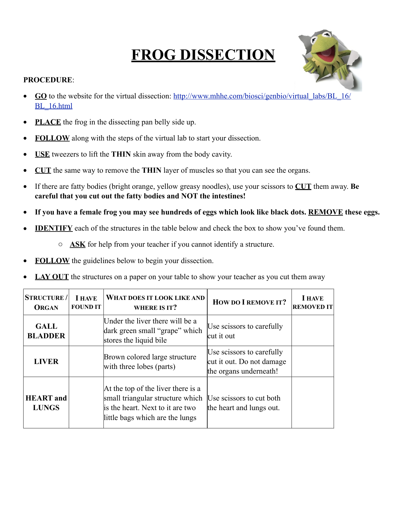 Worksheets Frog Dissection Worksheet frog dissection lab sheet