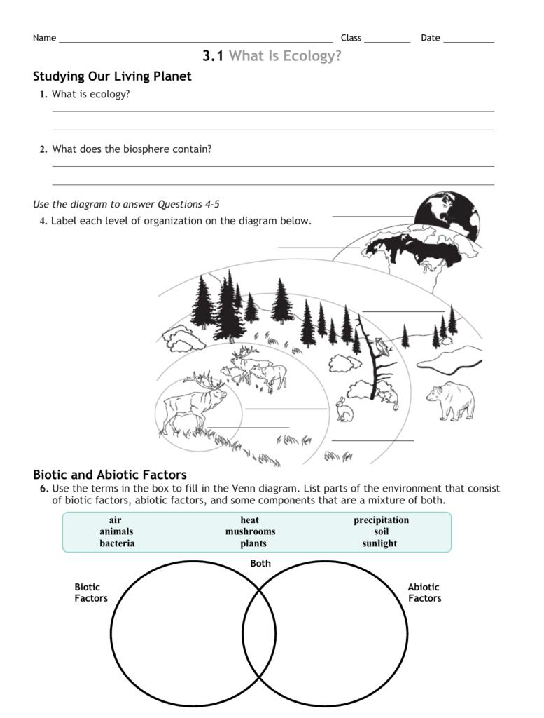 3 Review worksheet – Biosphere Worksheet