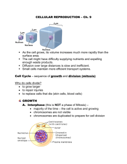 CELLULAR REPRODUCTION – Ch. 9 As the cell grows, its volume