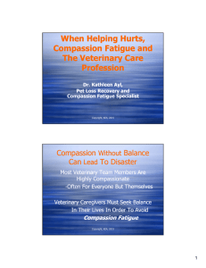 When Helping Hurts, Compassion Fatigue and The Veterinary Care