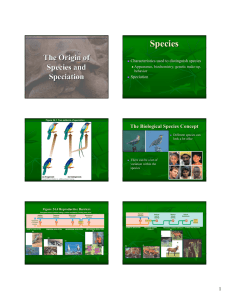 Chapter 24 Origin of Species and Speciation