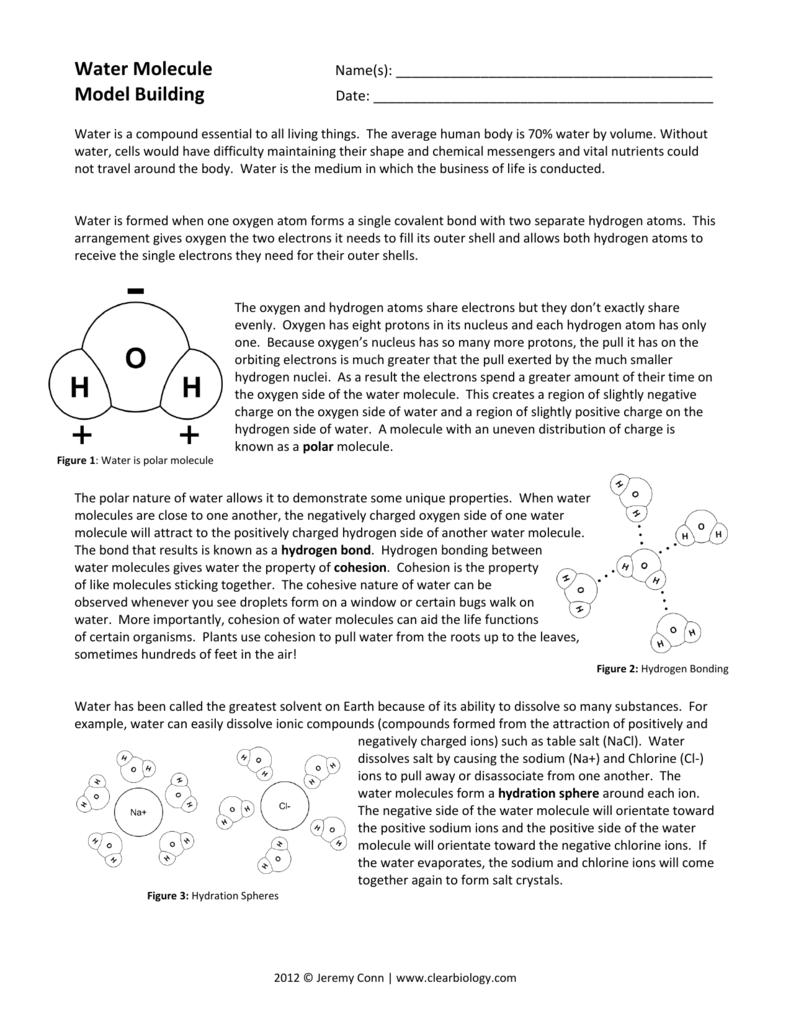 Water Molecule Model Building